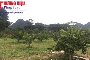 Vụ người dân khó khăn vay vốn ở Hà Giang: Giám đốc Agribank Bắc Quang 'cầm tay, chỉ việc' cho khách hàng?