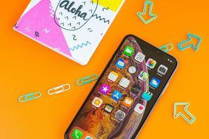 iPhone XS Max 2019: màn hình 'bèo' hơn nên giá sẽ rẻ hơn?