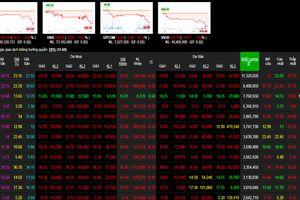 Phiên 14/12: Nhóm cổ phiếu ngân hàng nhốm đỏ thị trường