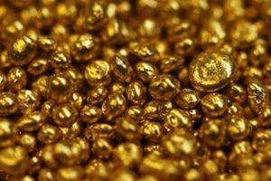 Giá vàng hôm nay 14.12: Vàng miếng trong nước giảm, thế giới neo cao