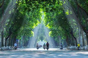 Hà Nội đặt tên cho 42 tuyến đường, phố mới