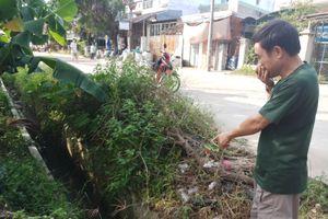 Bình Định: Ô nhiễm kéo dài, chính quyền chậm giải quyết!