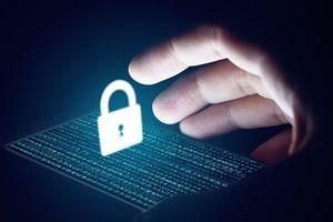 Đã có 114 tên miền quốc gia '.VN' áp dụng tiêu chuẩn an toàn DNSSEC