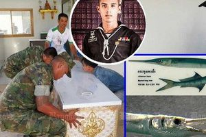 Tập trận, binh sĩ Thái bị cá cắt cổ tử vong