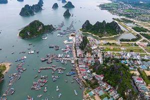 Quảng Ninh: Công ty Thủy sản Thống Nhất được giao 'miễn phí' gần 5.000m2 đất làm dự án tại Vân Đồn