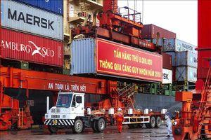 Cảng Quy Nhơn cán mốc 8 triệu tấn hàng hóa/năm
