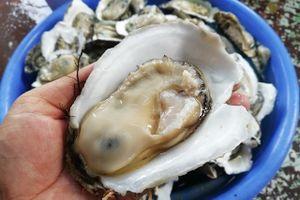 7 món ăn tiềm ẩn nguy cơ ngộ độc thực phẩm nhưng khách vẫn thản nhiên 'thưởng thứ'