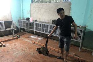 Phát hiện nhà hàng nuôi nhốt 51 cá thể động vật trái phép ở Đắk Lắk