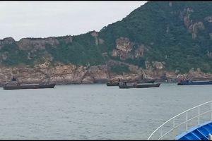 Tạm giữ 7 tàu Trung Quốc chở gần 500 tấn hàng đông lạnh