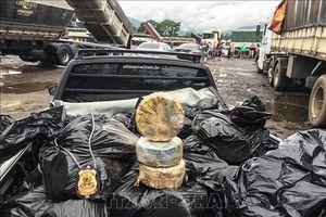 Brazil thu giữ số lượng ma túy kỷ lục trong năm 2018