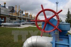Các dự án dầu mỏ và khí đốt năm 2019 tăng gấp 5 lần năm 2015