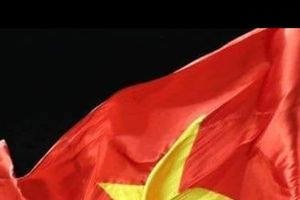 Rợp trời cờ Tổ quốc