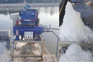 Hiệu quả kinh tế cao nhờ ứng dụng máy làm đá tuyết từ nước biển