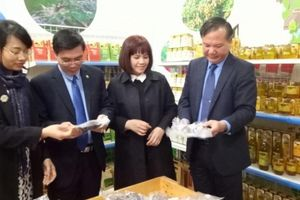 Tuần lễ giới thiệu sản phẩm nông sản an toàn của Hà Nội và Lào Cai năm 2018