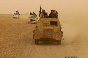 Thống đốc Idlib: Phiến quân chuẩn bị một chiến dịch lớn tại Hama và Latakia