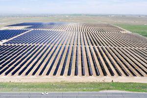 Bộ Công Thương đang nghiên cứu việc đấu giá điện mặt trời