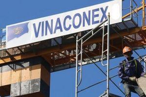 Vì sao Vinaconex bị phạt 'nặng', truy thu thuế lên tới gần 5 tỷ đồng?