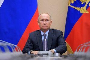 Tổng thống Putin: Nga sẽ tạo ra lực lượng 'hủy diệt' mặt đất nếu Mỹ rút khỏi INF