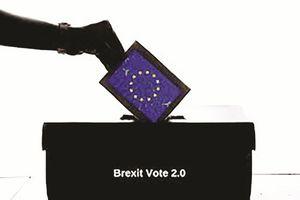 Nước Anh cần một cuộc trưng cầu thứ hai về Brexit?