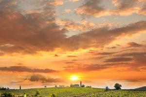 Chianti miền đất thơ mộng của nước Ý