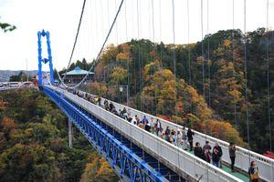 Nhảy Bungee mùa lá đỏ ở Nhật Bản