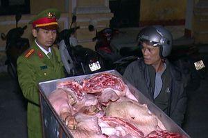 Chặn vụ vận chuyển liên tỉnh hàng tạ thịt lợn đang phân hủy
