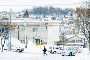 Hokkaido tuyết trắng, nơi đáng đến nhất mùa đông ở Nhật Bản
