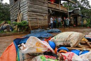 Di dân tự do ở Tây Nguyên: Lấy 17.000ha đất nông, lâm trường giao cho dân