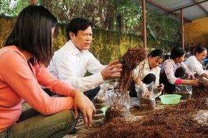 8,7 triệu lao động nông thôn được học nghề