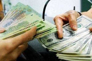 Đề xuất sửa luật để không tái diễn vụ 'Đổi 100 USD bị phạt 90 triệu đồng'