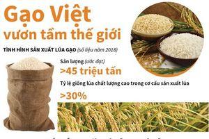 Sắp công bố Logo thương hiệu quốc gia gạo Việt Nam