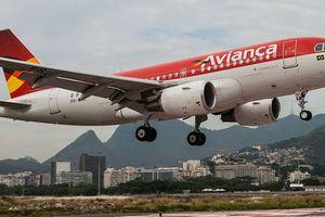 Hãng bay lớn thứ 4 Brasil cận kề phá sản