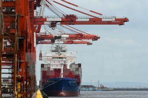 FedEx: Thương mại toàn cầu sẽ chững lại