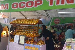 Bắc Kạn giới thiệu sản phẩm cam quýt đến người tiêu dùng Hà Nội