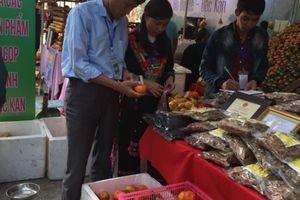 Bắc Kạn: Giới thiệu sản phẩm cây có múi tại Hà Nội