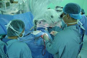 Phẫu thuật thành công bệnh nhân bị sán nhái chui vào não