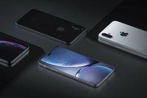 Ngôi vương Apple hồi sinh nhờ iPhone XI và XI Plus