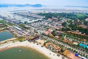 'Chúa đảo' Đào Hồng Tuyển muốn mở rộng Khu du lịch Tuần Châu lên gần 1.000ha
