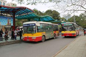 Hà Nội muốn 'hút' hành khách công cộng bằng minibus