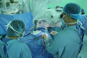 Phẫu thuật lấy con sán nhái dài 7cm làm ổ trong não nam bệnh nhân