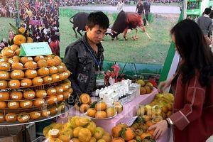 Bắc Kạn thúc đẩy phát triển nông sản đặc trưng vùng miền