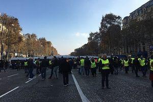 Putin: Không nên đánh giá chính phủ Pháp về biểu tình Áo vàng