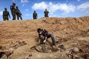 Phát hiện mộ tập thể chứa hàng chục thi thể nạn nhân của IS ở Iraq