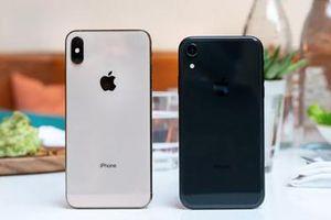 Apple với nguy cơ bị cấm bán iPhone tại Đức