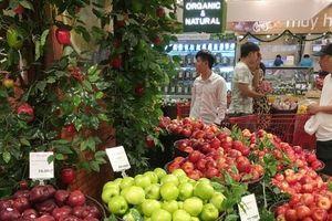 Người Việt chi hơn 100 tỷ đồng mỗi ngày để mua nho Mỹ, táo Nhật...