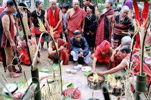 Phục dựng Lễ hội Tết cơm mới của đồng bào Pa Cô - Tà Ôi vùng cao A Lưới