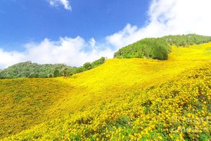 Ngắm vẻ đẹp hùng vĩ của ngọn núi lửa Chư Đăng Ya