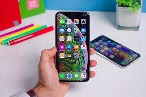 Nóng: Nhiều iPhone mất kết nối di động sau khi cập nhật lên iOS mới nhất