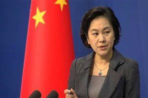 Trung Quốc 'lớn tiếng' chỉ trích Canada và Mỹ về vụ bắt giữ Giám đốc tài chính Huawei