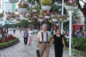 Đà Nẵng: Nhiều hoạt động văn hóa chào năm mới 2019